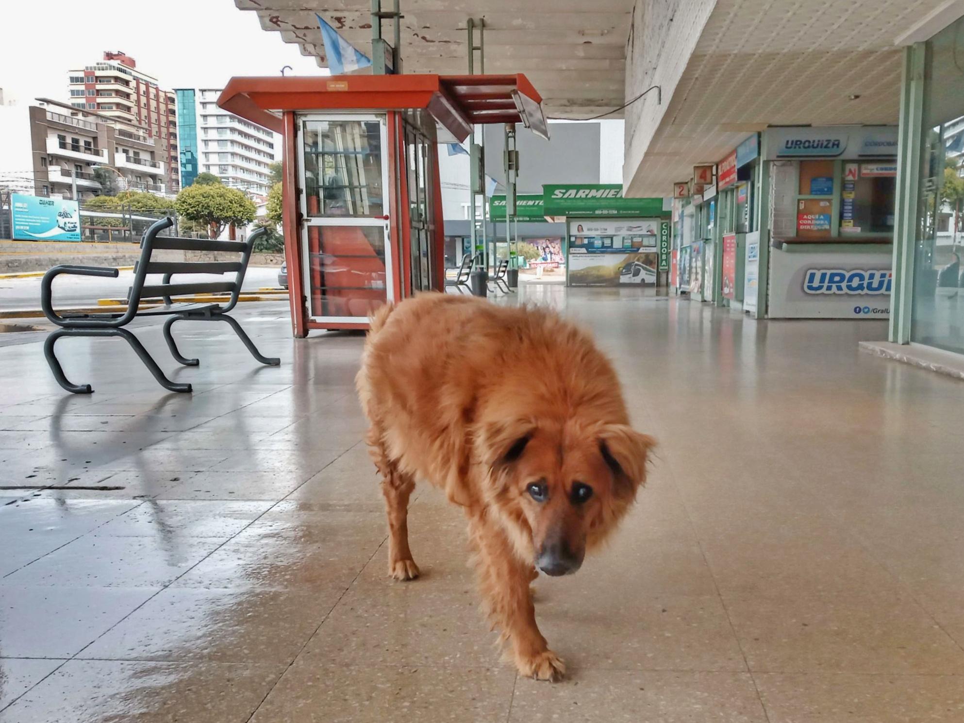 Sin turismo, un fin extra largo que pasa con penas y sin gloria en Carlos Paz