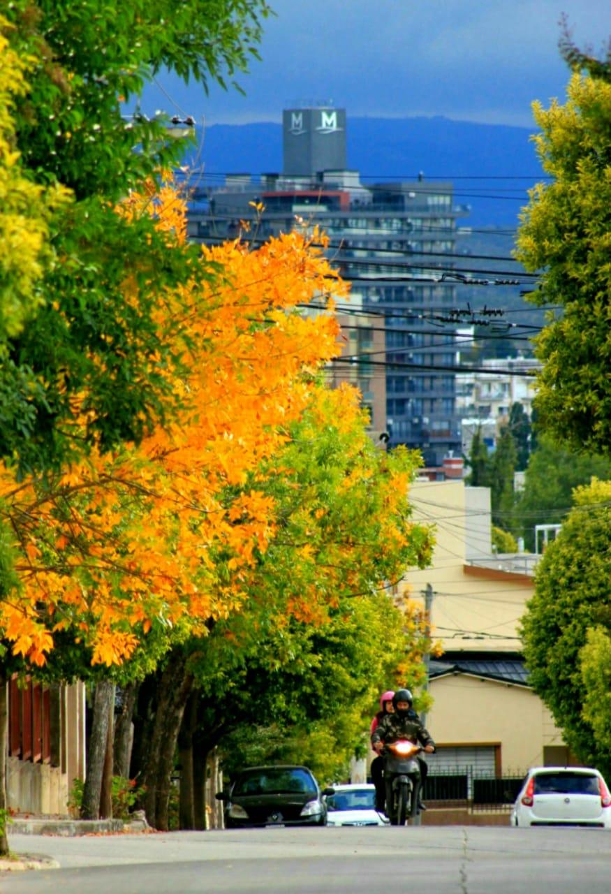 Mirando el otoño de lejos