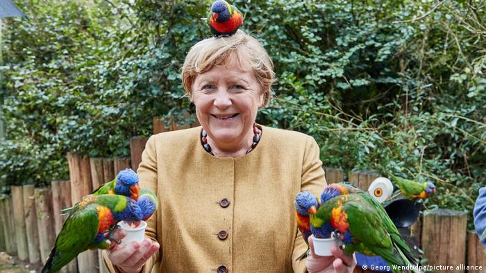 La reacción de Angela Merkel al ser picoteada por un loro