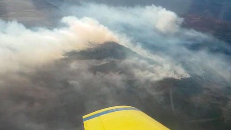 """Es """"extremo"""" el riesgo de incendio forestal en la región durante el fin de semana"""